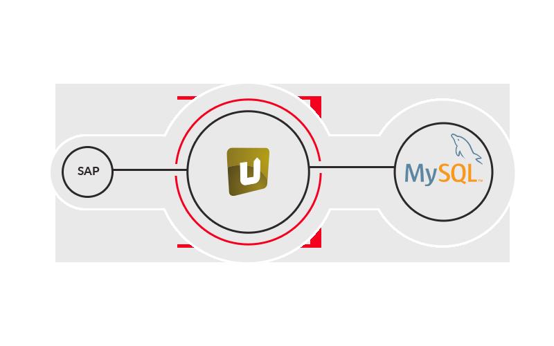 SAP und MySQL nahtlos verbinden